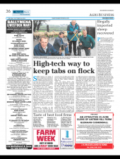 Agri Business - High Tech Way to Keep Tabs on Flock